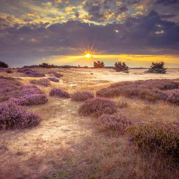 5 leuke uitjes in Nederland